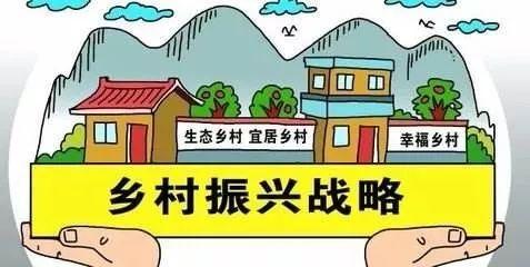习近平:促进农业高质高效乡村宜居宜业农民富裕富足